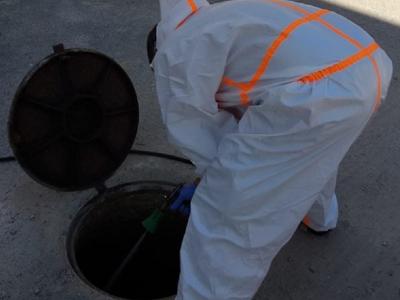 Campaña de desratización y desinsectación en la red de alcantarillado y zonas públicas del municipio de Archena