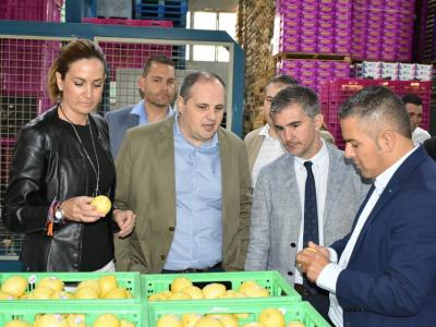 Celebrado en Archena el consejo de dirección de la Consejería de Agricultura y Agua, después de la visita a distintas empresas, con el 'Limón Fino' como protagonista