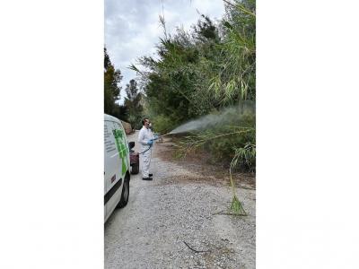Nuevo tratamiento contra los mosquitos y todo tipo de dípteros en las zonas cercanas al ríoSeguraa su paso porArchena