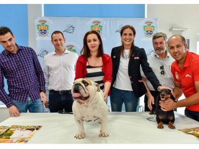 El domingo, 20 de octubre, en el Polideportivo Municipal, 'I Concurso y Exposición Nacional de Razas Caninas con pedigree'