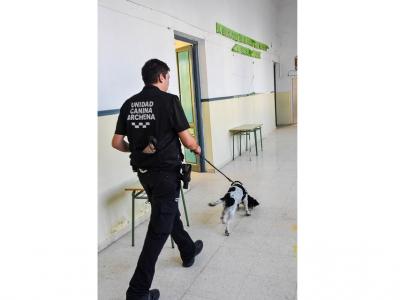 Primer entrenamiento técnico para unidades caninas de Policía Local
